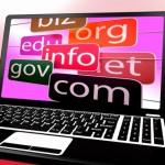 Mengetahui Apa Itu Domain